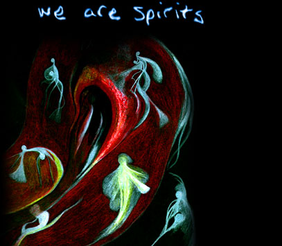 we are spirits